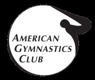 Agc logo s300