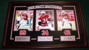 Watt brothers s300