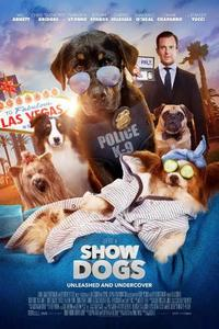 Show dogs s300