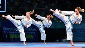 Karate s300