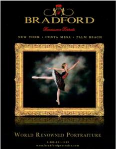 Bradford brochure s300