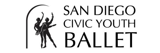Sdcyb horizontal logo s550