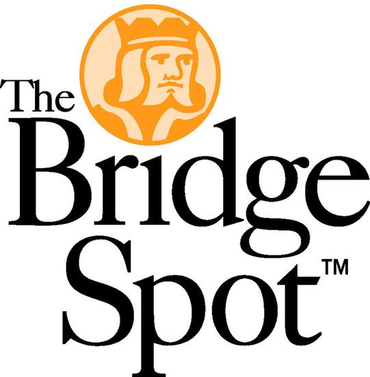 Bridge spot logo pms1375 s550