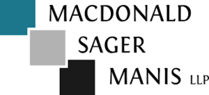 Msm logo s300