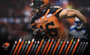 Bclions s300