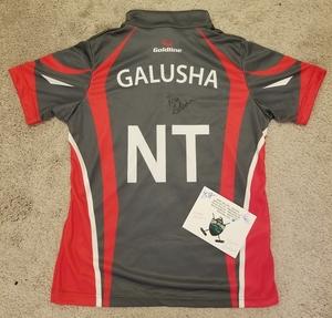Galusha s300