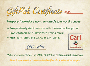 Gift certificate giftpak 2013 front   4x5.5 s300