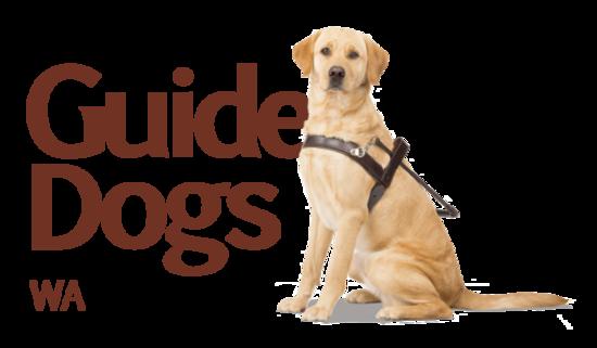 Guidedogs wa sml rel1 rgb s550