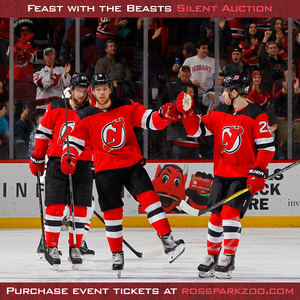 2018 new jersey devils s300
