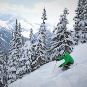 Skiing s300