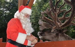 Santa reindeer s550 s300