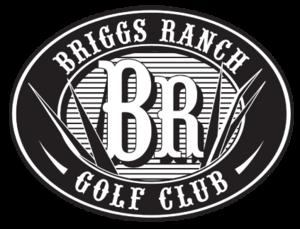 Briggs logo black2 s300