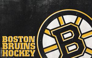 Bruins logo s300