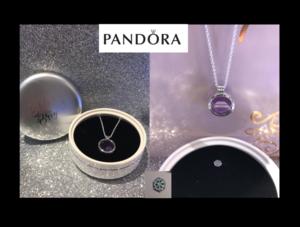 Pandora 4 s300