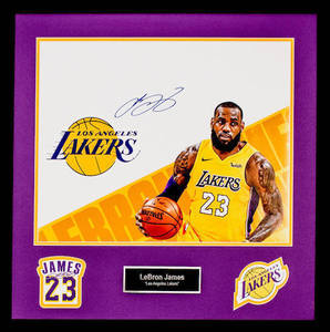 Lebron james 16x20 photo c s300