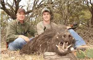 Wild boar pic s300