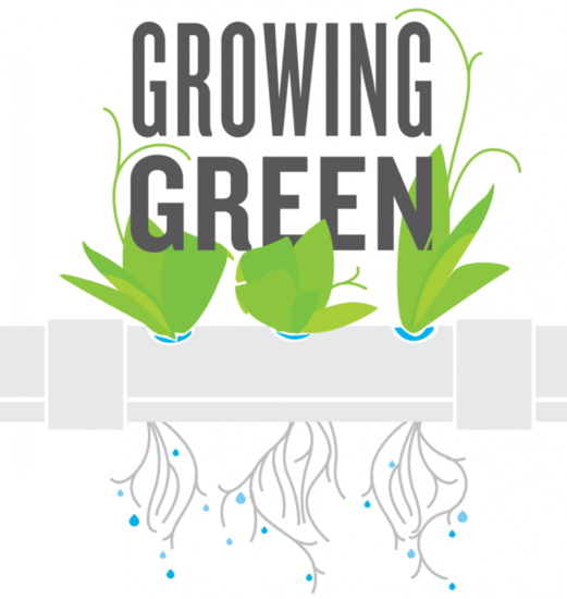 Growing green cover art v5 s550