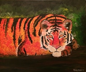 Tiger 1 s300