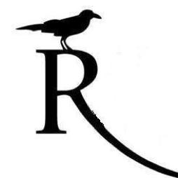 Raven s300