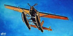 Float plane above the snye s300