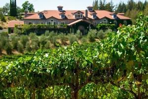Byington winery 1000x667 s300