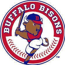 Buffalo bisons s300