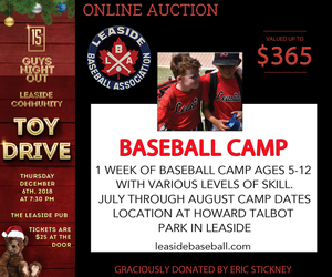 Online auction leaside baseball camp s300