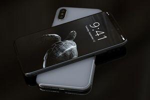 Iphonex s300