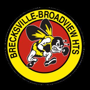 Bbhcsd bees logo  1  s300