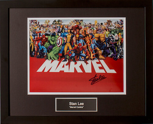 Stan lee marvel s300
