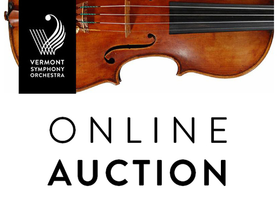 Auction website image s550