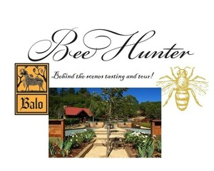 Bee hunter tour1 s300