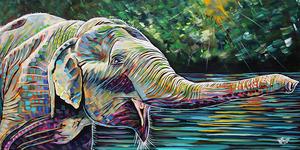 Elephant rhapsody e s300