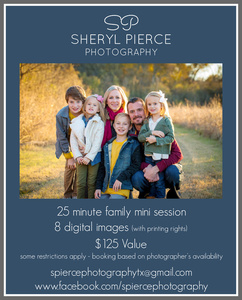 Sheryl pierce s300