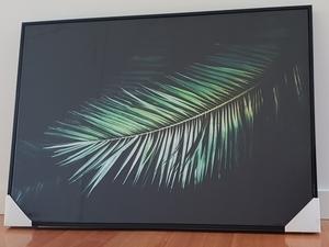 Palm s300