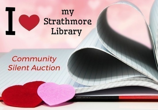 Community silent auction s550