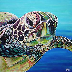 Sea turtle 2019 e s300
