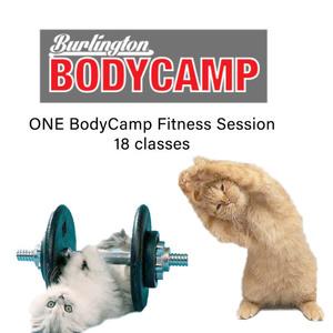 Body camp new s300
