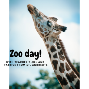 Zoo day s300