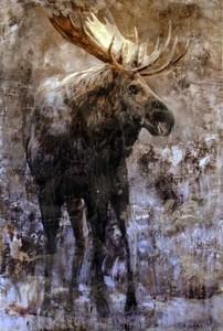 Moose s300