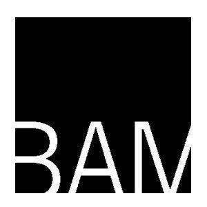 Bam s300