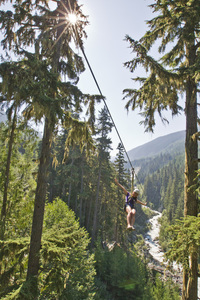 Ziptrek bear summer creek  1  s300