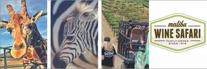 Malibu wine safari s300