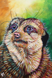 Mcneilly the meerkat e s300
