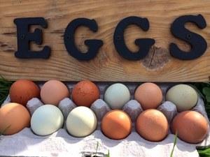 Eggs s300