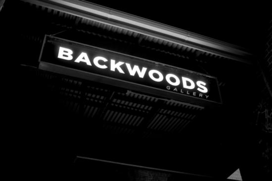 Backwoods gallery entrance s550