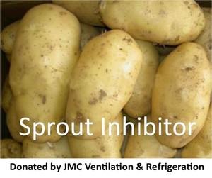Sproutnip s300