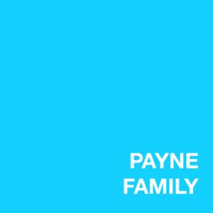 Payne s300
