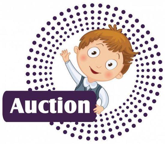 Auction 3 856 600 600 80 s550
