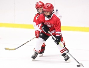Hockey s300